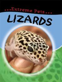 lizards-deborah-chancellor-hardcover-cover-art.jpg